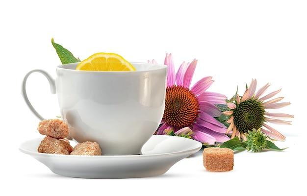 Kopje thee met citroen en echinacea op een witte achtergrond