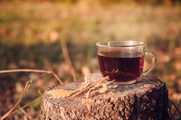 Kopje thee met herfstbladeren