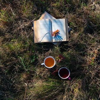 Kopjes thee en boeken in de tuin