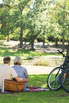 Koppel met picknickmand in park