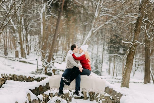 Koppelen de jonge minnaars in de winterjasjes en sjaals zittend in een sneeuwpark