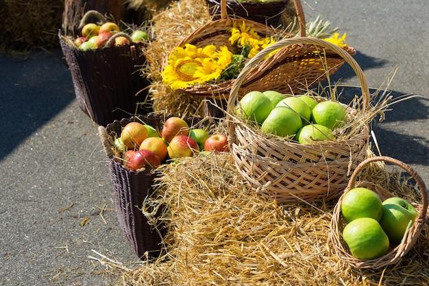 Koppen van graan, appels en zonnebloemen. oogst op de hooiberg