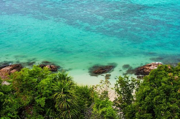 Koraalriffen langs de kust turkoois water met groene struiken in de voorkant van de zee