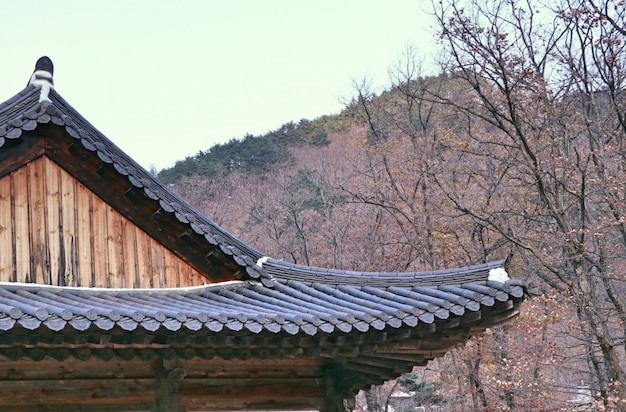 Koreaans traditioneel architectuurdak