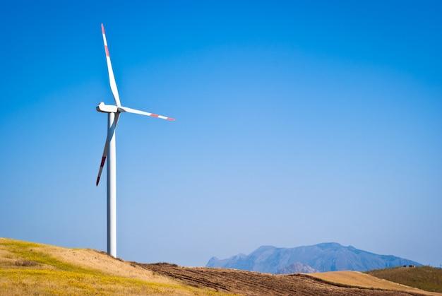 Korenveld met windmolens