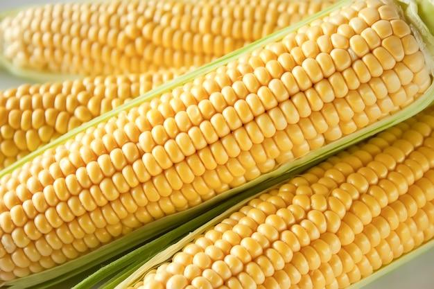 Korrels van rijpe maïs, close-up achtergrond