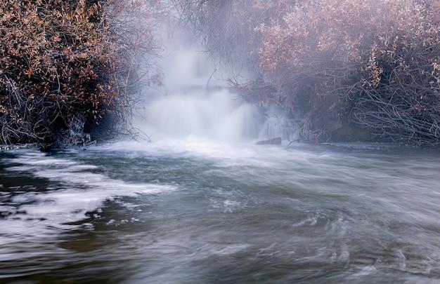 Krachtige waterval omgeven door droge planten