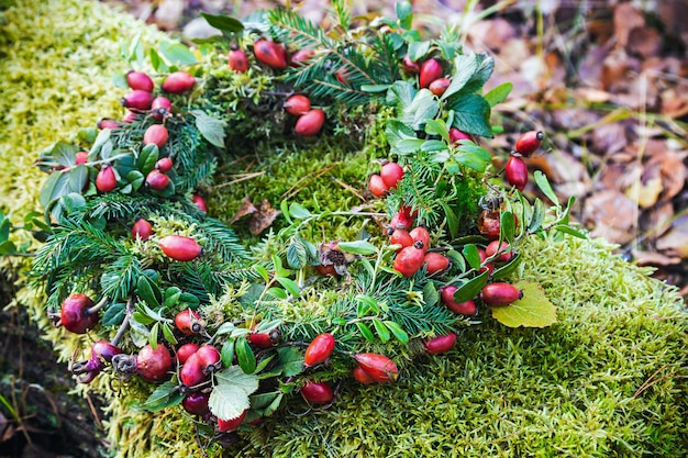 Krans van wilde roos en boomtakken op het mos