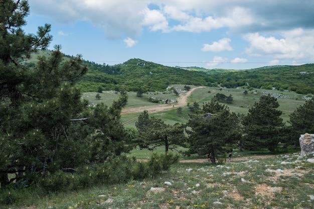 Krim-dennen gebogen door de wind op een zonnige rots in de verte bergen bedekt met bossen