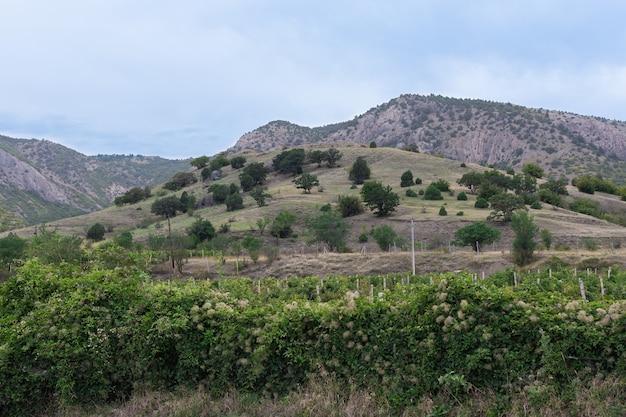 Krimbergen en wijngaarden in de buurt van het dorp vesele, de krim