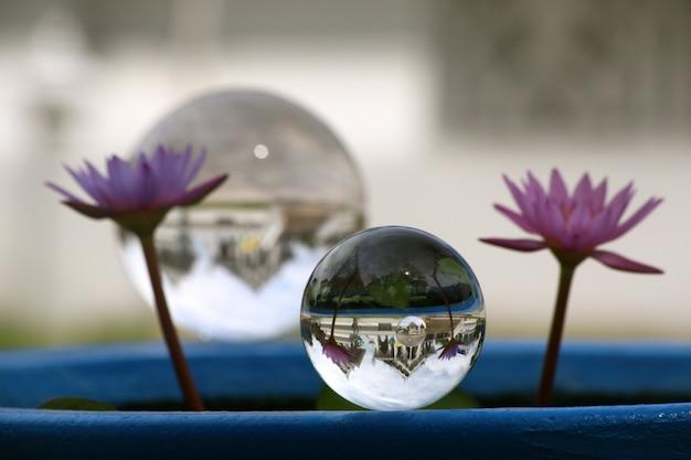Kristallen bol met twee paarse bloemen ernaast