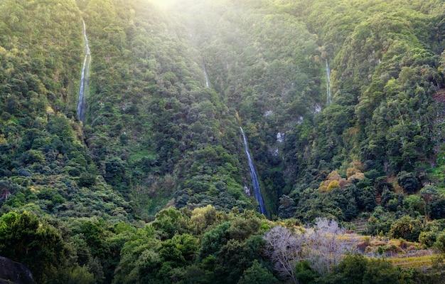 Kristallen watervallen in de bergen van madeira, portugal