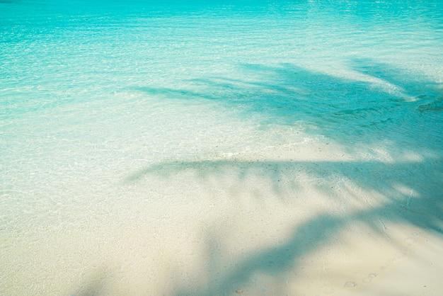 Kristallijne zee met schaduw van een palmboom, paradijs op de malediven.