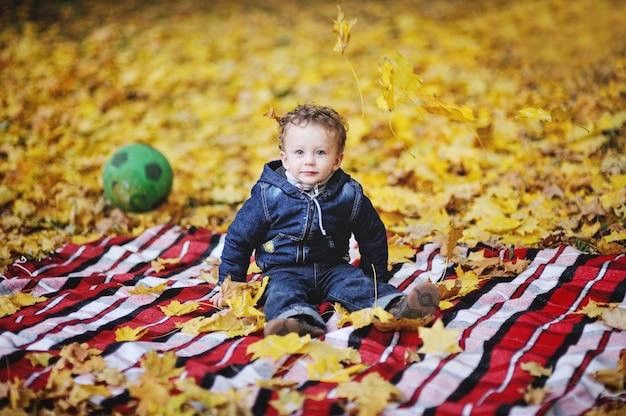 Kroezige baby met blauwe ogen die op een achtergrond van de herfstbladeren zitten