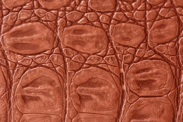 Krokodillenleer textuur
