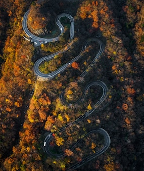Kronkelende weg in de herfst in japan