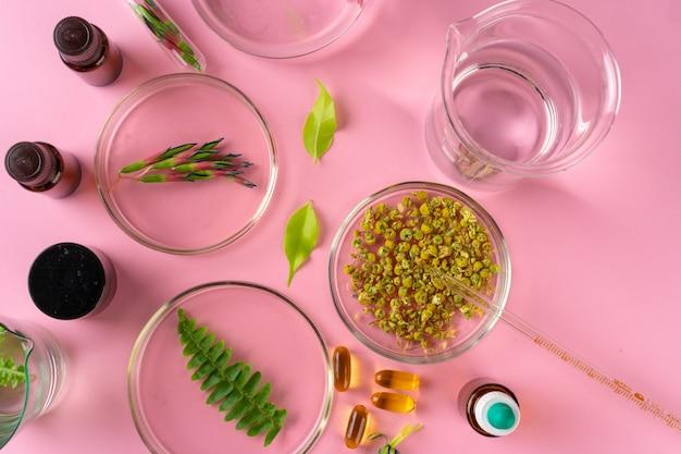 Kruiden en kruiden voedingssupplementen bovenaanzicht