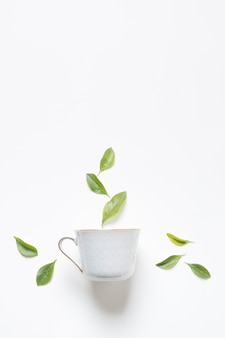 Kruiden groene citroenbladeren over de theekop tegen witte achtergrond