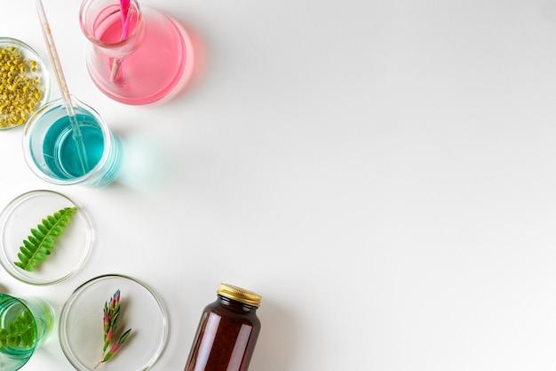 Kruiden voedingssupplement maken in laboratorium met bladeren van planten. gezondheid en schoonheid concept
