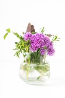 Kruiden voedsel concept bieslook bloeit en aromatische kruiden in glazen pot geïsoleerd op een witte achtergrond