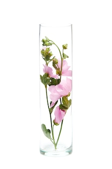 Kruiden wilde bloemen in een glazen kolf