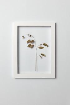 Kruidenbeeld met natuurlijke groene bladtak in een regtangular frame op een lichtgrijze muur, exemplaarruimte. plat leggen.