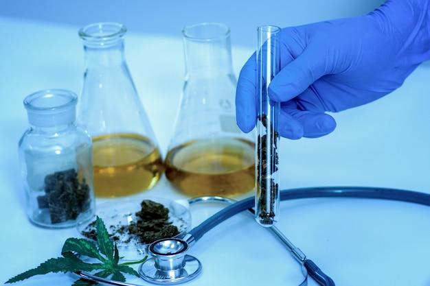 Kruidengeneeswijze cannabis in laboratorium.