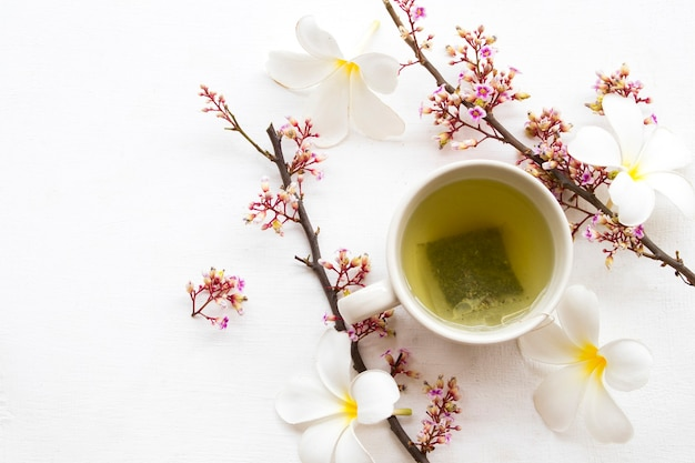 Kruidengezondheid drinkt hete groene thee