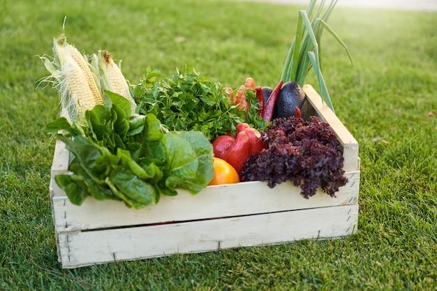 Kruidenierswinkeldoos met verse groenten die zich op groen gras outdoo . bevinden