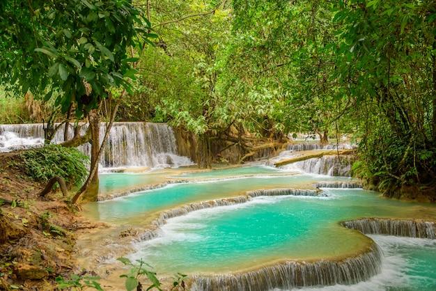 Kuang xi falls, turquoise waterval in gebied luang prabang, laos