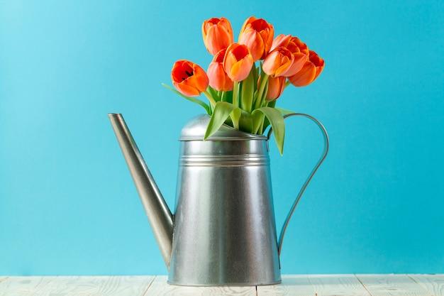 Kunnen metalen gieter met tulpen en blauwe achtergrond