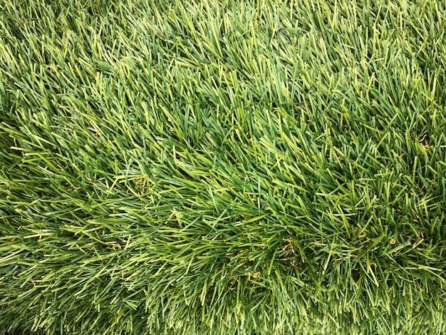 Kunstmatig groen gras gemaakt van plastic