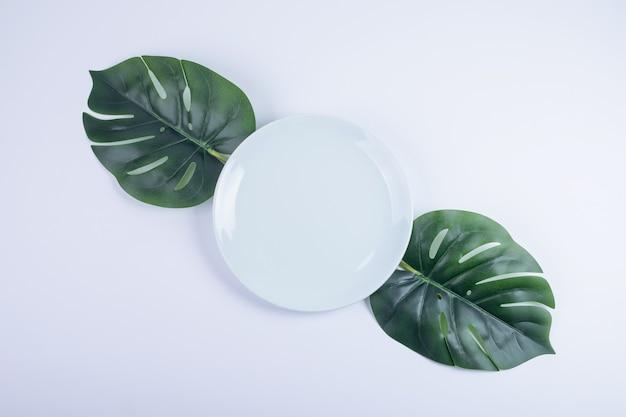Kunstmatige groene bladeren en witte plaat op wit oppervlak.