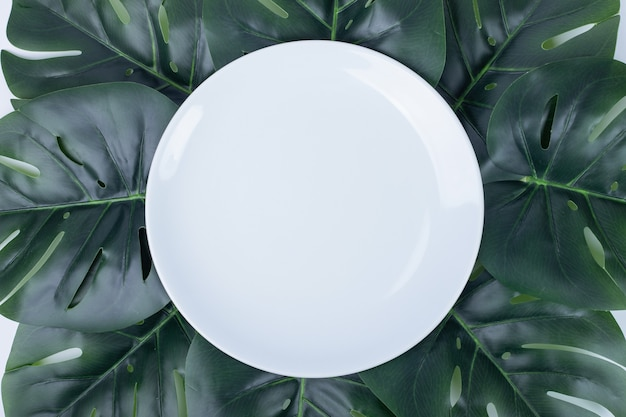Kunstmatige groene bladeren rond witte plaat.