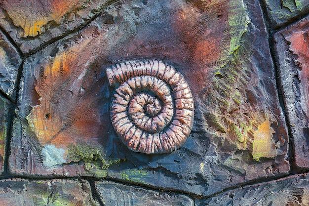 Kunstmatige kopie van oude fossiele ammoniet