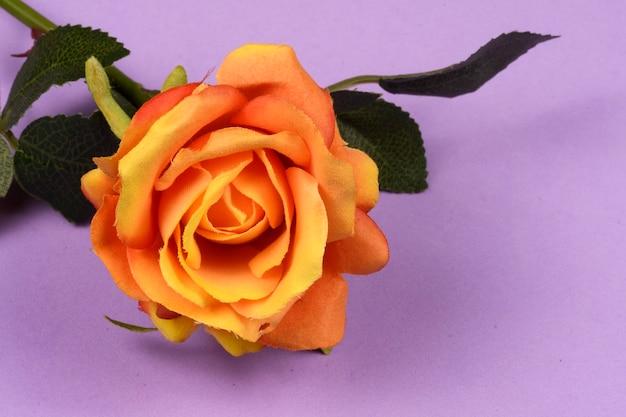 Kunstmatige roze bloem op lila achtergrond