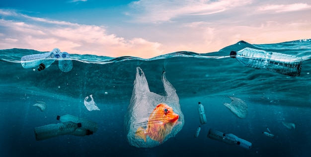 Kunststoffen in de zeeën. wereldwijd probleem