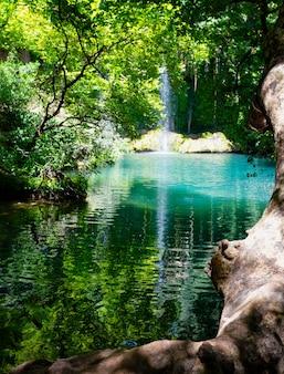 Kursunluwaterval in een natuurpark