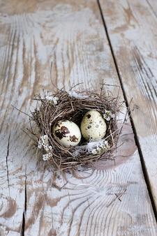 Kwarteleitjes in het nest van een vogel op een houten