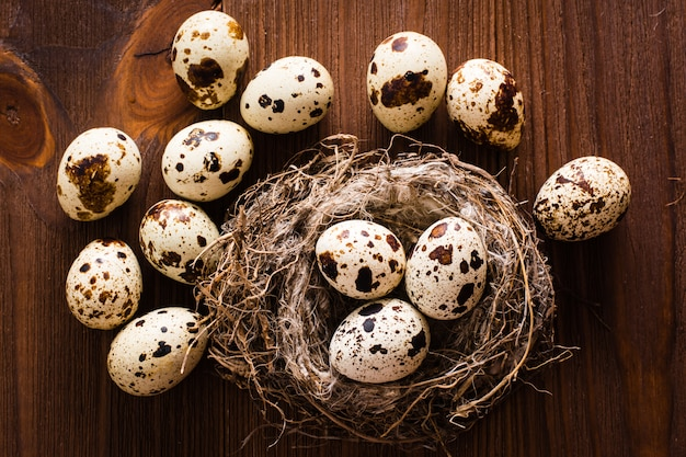 Kwarteleitjes in nest en op een houten tafel. bovenaanzicht