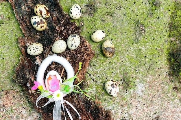 Kwarteleitjes, kippendecoratie voor pasen op de boomschors en mos, natuurlijke vakantieachtergrond met exemplaarruimte.