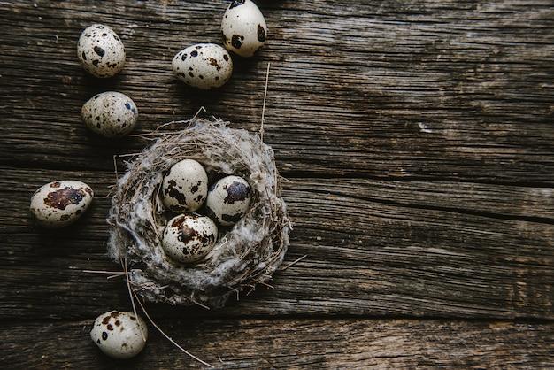 Kwartelseieren in een nest op een houten achtergrond