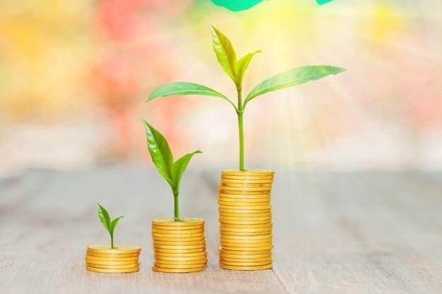 Kweek kleine planten met munten gestapeld met bokeh achtergrond.