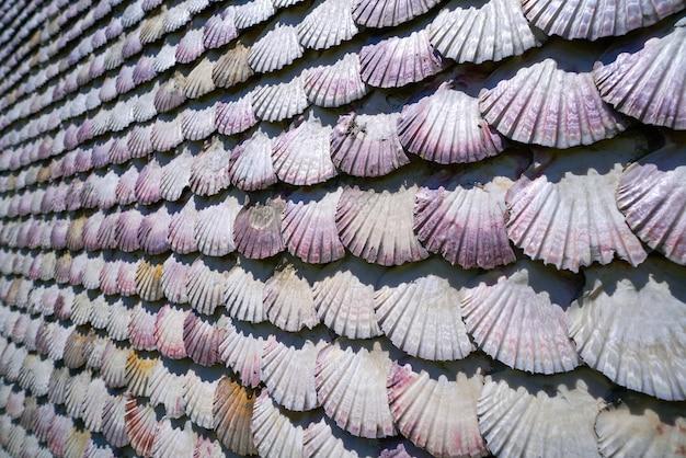 La toja-eiland toxa-kapel van zeeschelpen