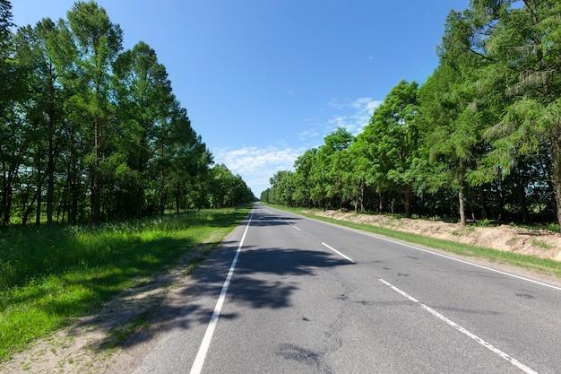 Laat de asfaltweg met witte wegmarkeringen in het bos het zomerse landschap zien