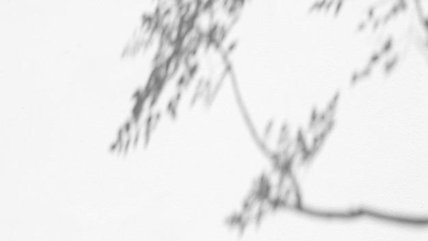 Laat een natuurlijk schaduwoverlay-effect achter op een witte textuurachtergrond