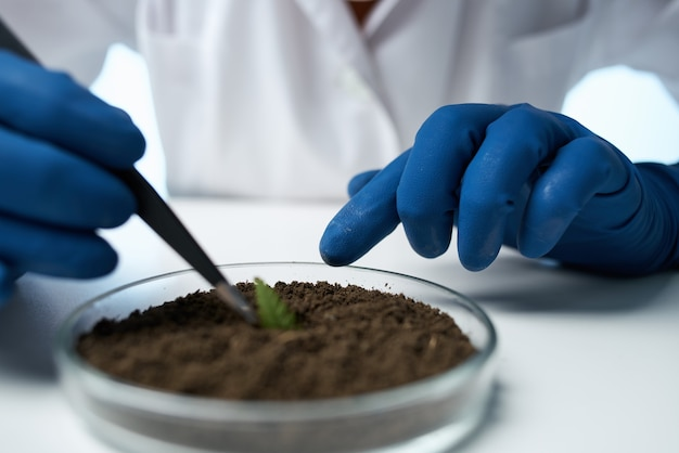 Laboratoriumbiologie bodemonderzoek wetenschap. hoge kwaliteit foto