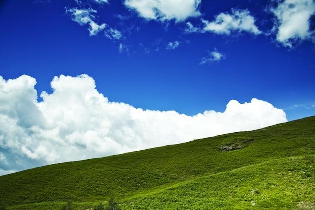 Lage hoek die van een groene heuvel met een bewolkte blauwe hemel op de achtergrond is ontsproten
