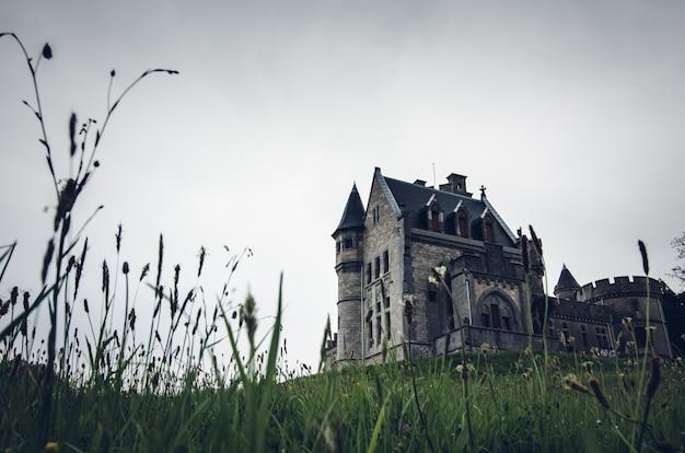 Lage hoek die van een oud mooi kasteel op een met gras begroeide heuvel is ontsproten