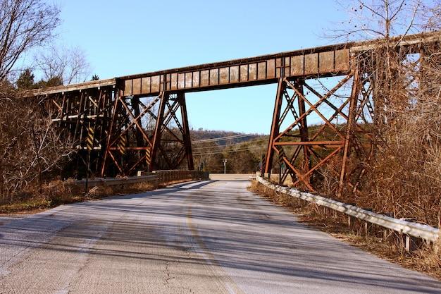 Lage hoek die van een roestige spoorwegbrug is ontsproten die door bladerloze bomen wordt omringd